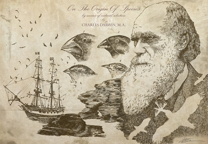 Asal Usul Charles Darwin Menulis Buku The Origin of Species