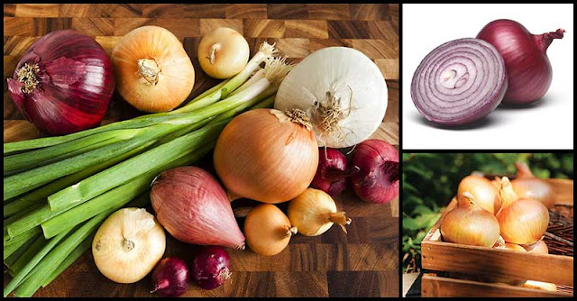 Onions And Liver Health