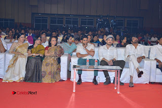 Om Namo Venkatesaya Telugu Movie Audio Launch Event Stills  0290.JPG