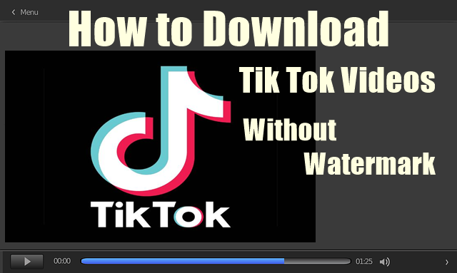 How to Download Tik Tok Videos Without Watermark