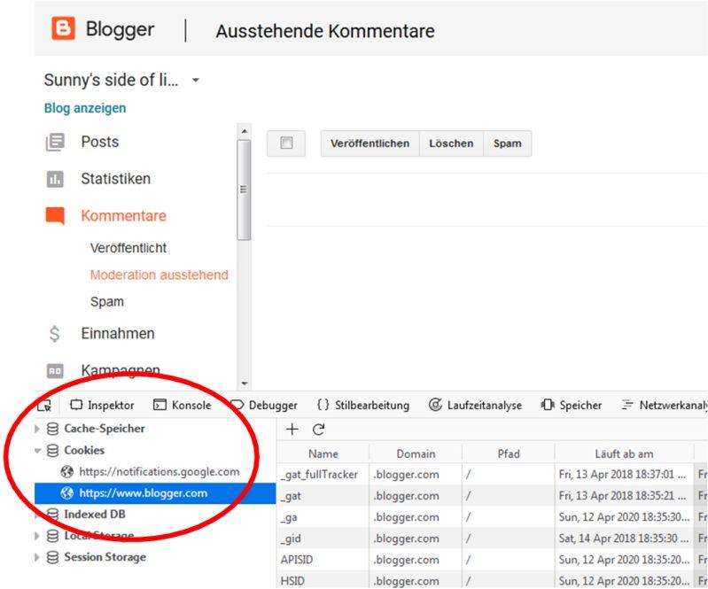 Cookies bei geladenem Bloggerdashboard