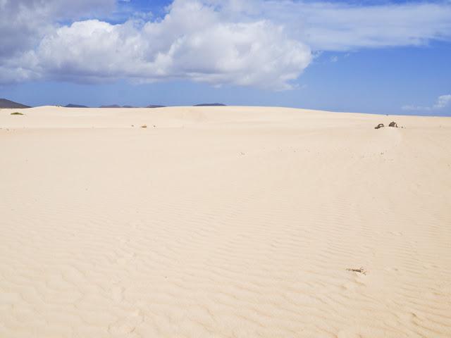 Il parco naturale di Corralejo