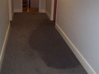 In a carpeted hallway, you can see a huge dark area on the light brown carpet, indicating a water leak