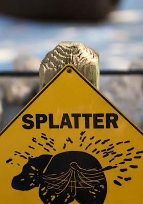 Funny Signs Warning Splatter