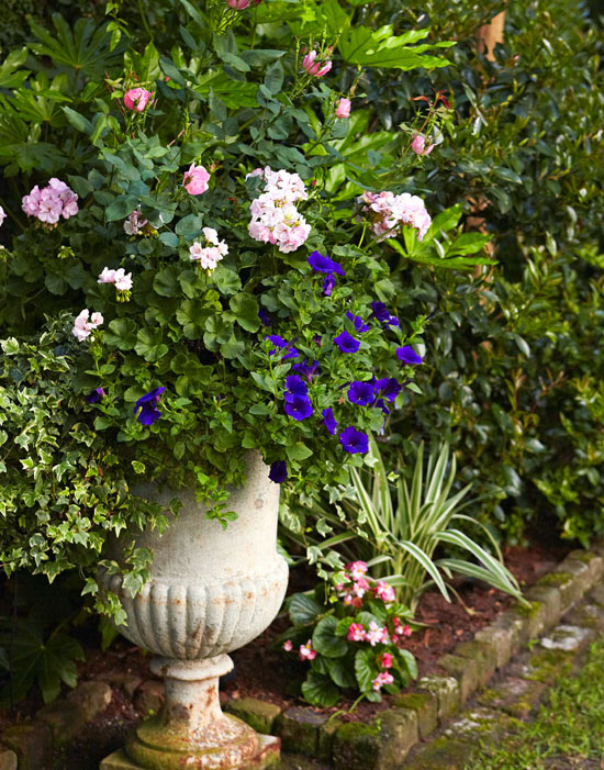 Lunch & Latte: Garden Design: An Old South Charm In Charleston