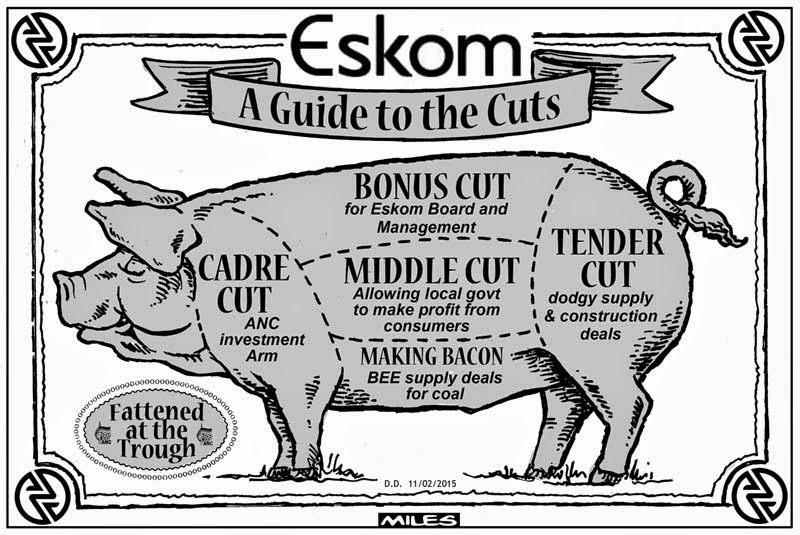 Load Shedding Pinterest: Cartoons By Miles: February 2015