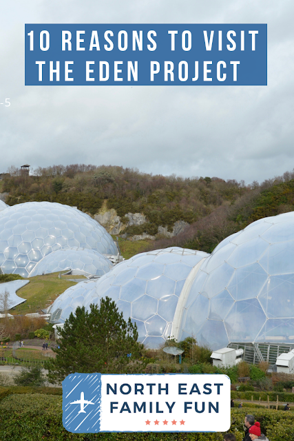 10 Reasons to Visit the Eden Project in Winter