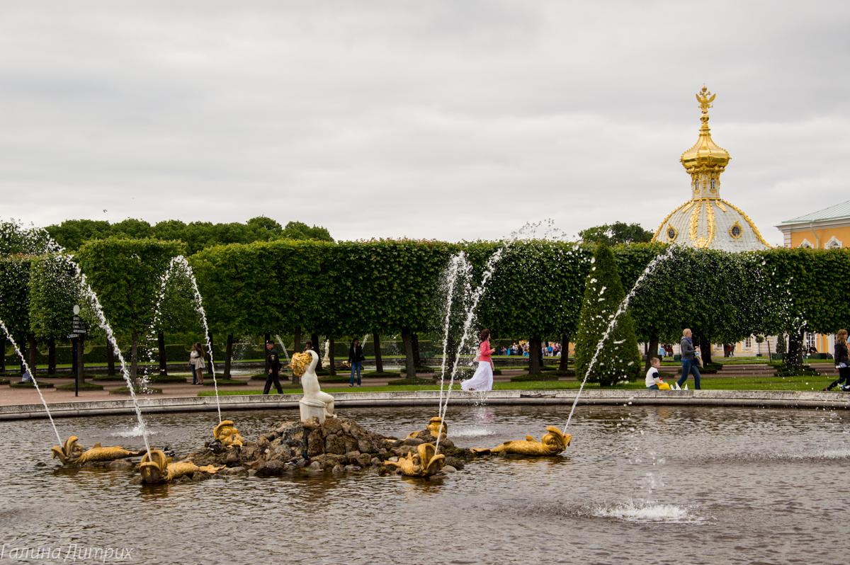 Фонтаны перед дворцом в Верхнем саду Петергофа фото