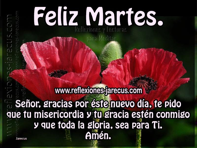 Feliz martes Señor, gracias por éste nuevo día, te pido que tu misericordia y tu gracia estén conmigo y que toda la gloria, sea para ti. Amén