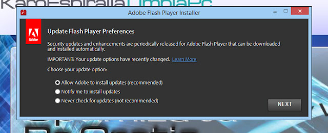 Adobe Flash Player system plug-in