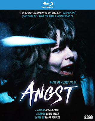 http://horrorsci-fiandmore.blogspot.com/p/angst-let-me-start-this-review-off-by.html