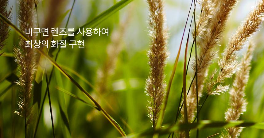 Тестовый снимок Samyang AF 50mm f/1.4 AS IF UMC