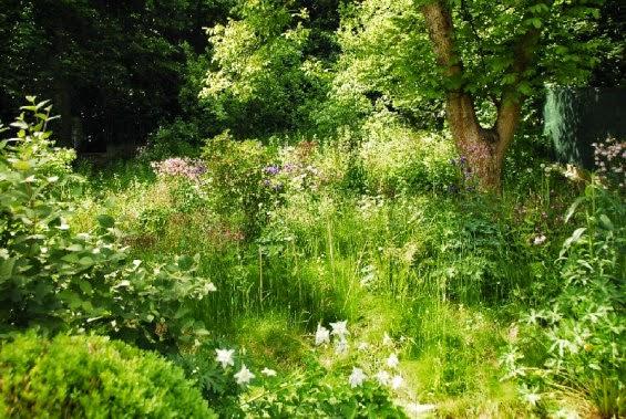 Projekt romantycznego pastelowego ogrodu