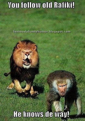 Funny photo of lion following monkey - Lion King