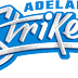 BBL Adelaide Striker 2018-19 Team Squad - Jersey Color Images Photos