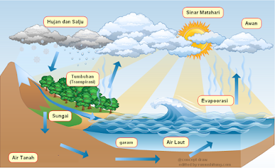 Siklus Hidrologi: Pengertian, Tahapan dan Macamnya