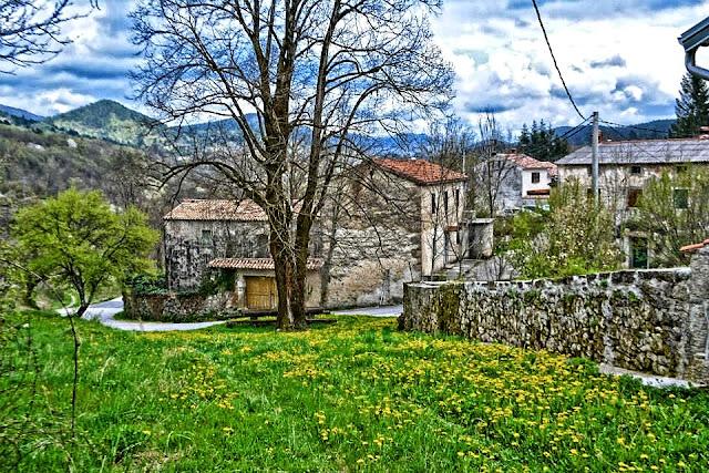 Trstenik Istra