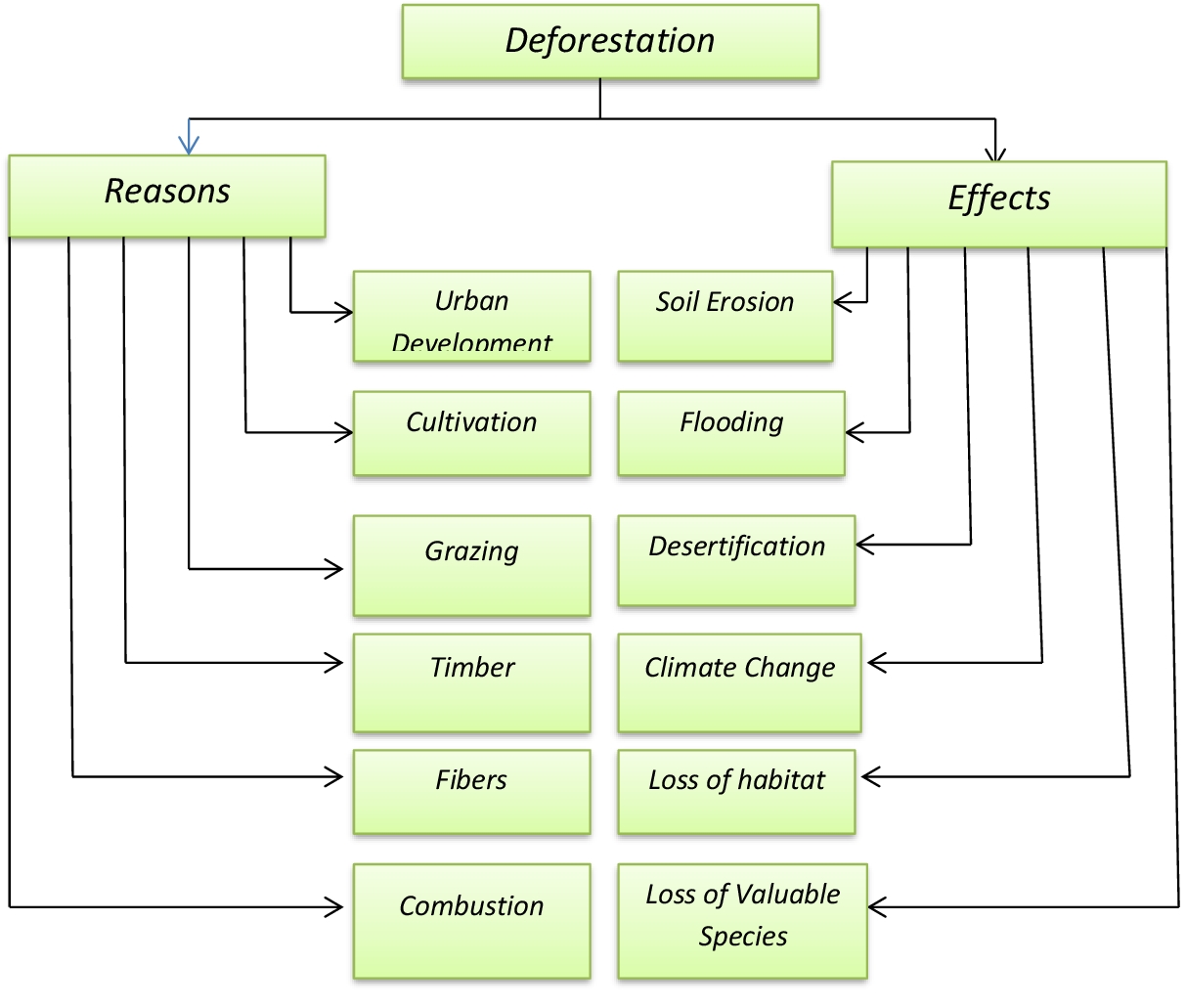 Deforestation Effects Diagram