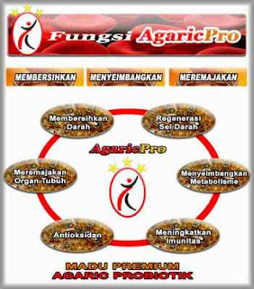 Fungsi Produk Herbal AgaricPro