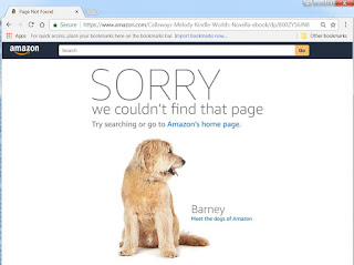 Even when the books still were on Amazon, the links went nowhere...
