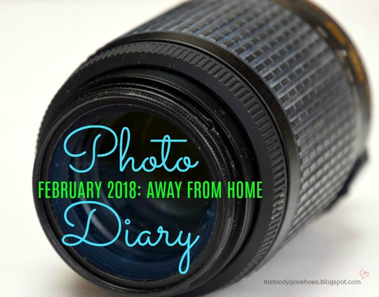 Photo Diary Feb 2018   Ms. Toody Goo Shoes