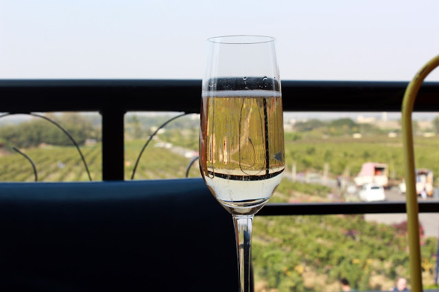 India, travel, mumbai, nashik, sula, vineyard, tour, experience, wine, colourful, View, grape, plantation