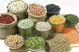 Agri commodity calls, Agri Commodity Tips, Free  Commodity Tips, Free Agri Tips, MCX Tips Services, Pulses