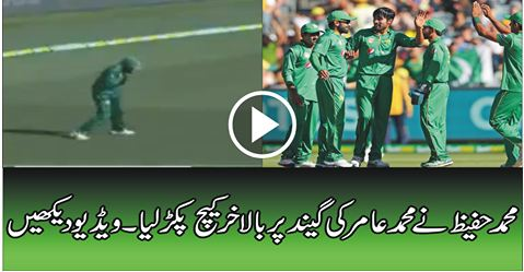 SPORTS, CRICKET, Muhammad Hafeez Best catch,