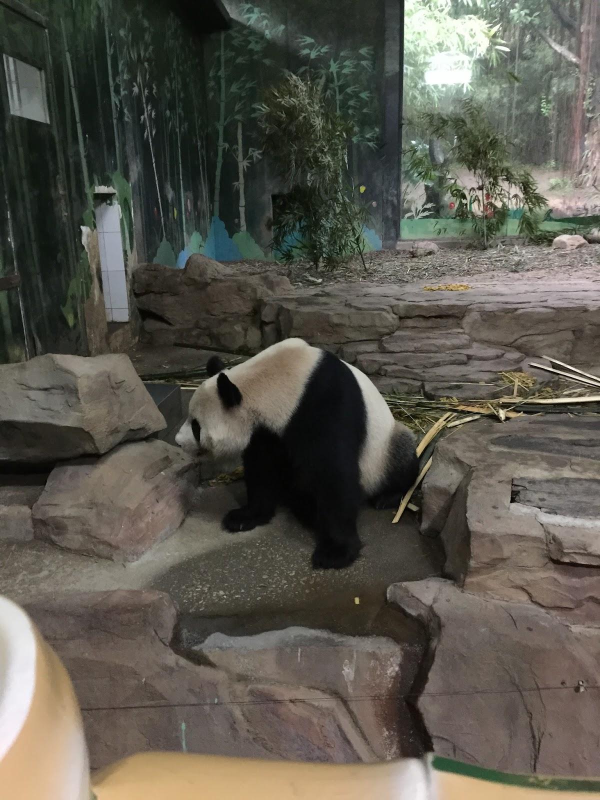 , China: Days 14 & 15