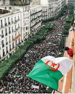"""مسيرات الجزائر ضد الرئيس """"بوتفليقة """" تعتبر الأضخم من نوعها"""
