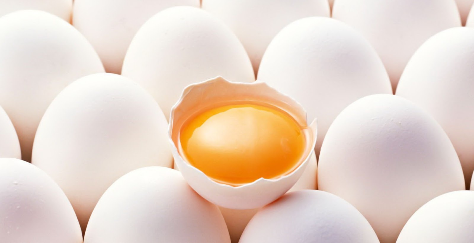 Whole Egg Nutrition Facts/ Everything About Eggs | HealthVist