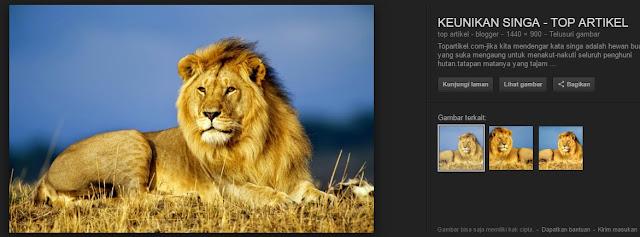 10 Hewan Tercepat Berikut Ini Membuat Kita Berpikir Bahwa Kita Bukanlah Makhluk Terhebat