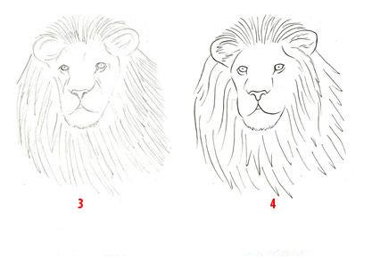 Atelie Coloriz Aprenda A Desenha Um Leao