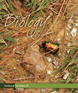 Class 11 Biology Solutions