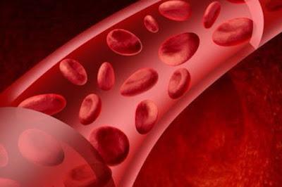 اعراض فقر الدم  علي الجسم وطرق الوقاية منها .