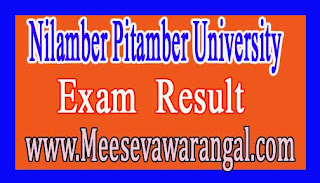 Nilamber Pitamber University B.Com Accounts Hons / B.Sc Ist Year 2015-16 Exam Results