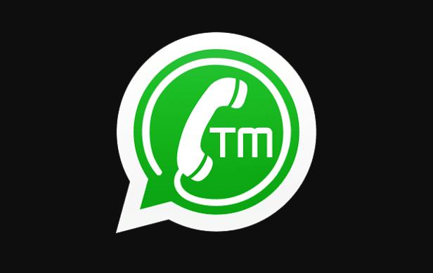 TMWhatsApp APK 7.73.2