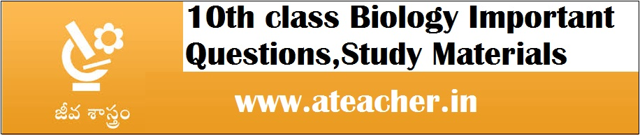 10th class Biology Important Questions,SSC Tenth Biological Sciences Study Materials