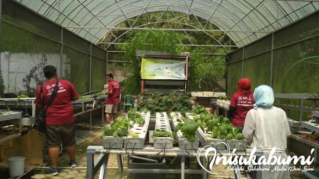 Instalasi aquaponic di KAC, aquaponic ini penggabungan dari budidaya ikan lele dengan menanam sayuran