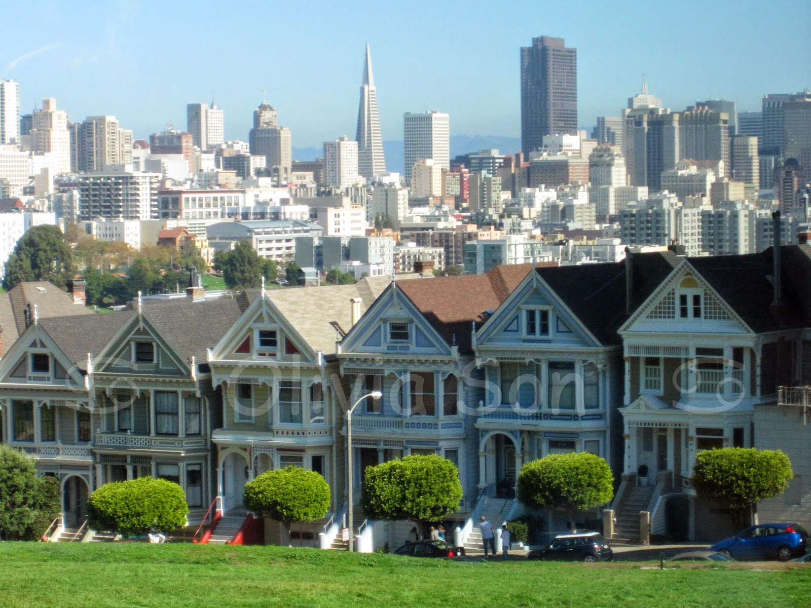 alamo square, san francisco, californie, usa