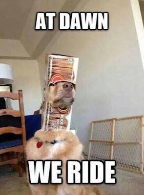 Funny Dog Humor : Let's attack