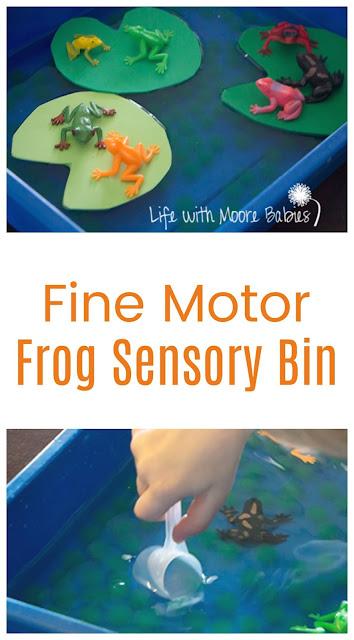Frog Themed Sensory Bin for a Hopping Good Time