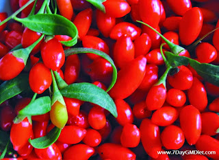 Are Goji Berries good for Losing Weight