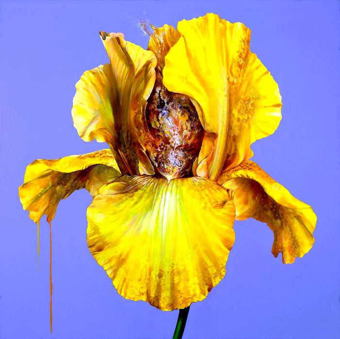 Рисунки цветов. Carmelo Blandino 11