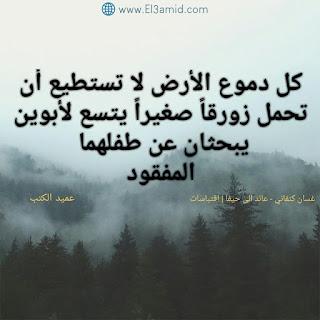اقتباسات رواية عائد الى حيفا | غسان كنفاني