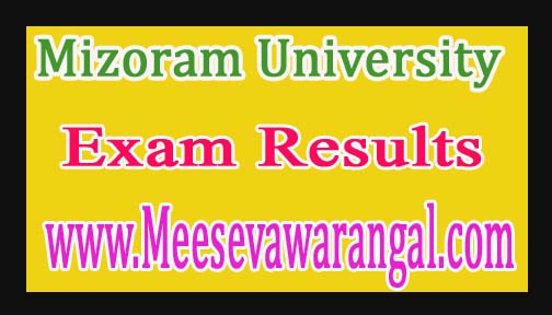 Mizoram University MA Political Science IVth Sem Repeater 2013 Exam Results