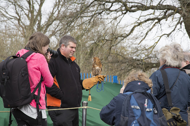 Park Camera customers taking a photo of an owl at our Wildlife Day 2018
