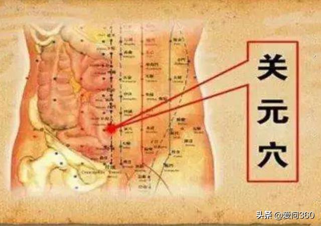 這3個穴位排毒又健身,適合冬天按,能祛濕補氣!(補血養腎)