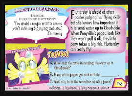 My Little Pony Eight Hundred Wing Power! Series 2 Trading Card