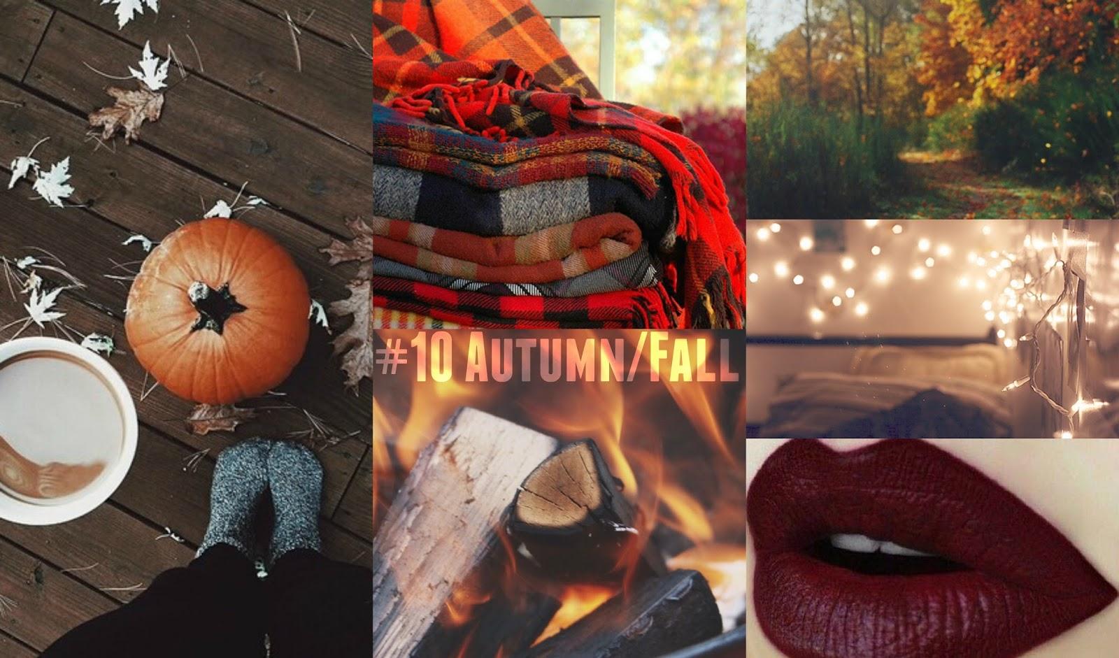 The Sunday Topic No.10 Autumn/Fall